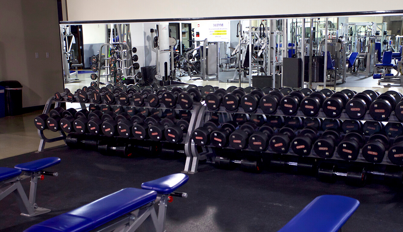 The Gym LA – THE ULTIMATE TRAINING FACILITY